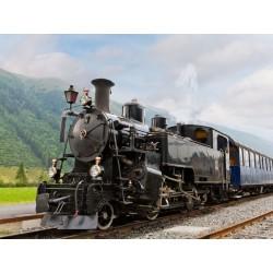 Il treno a vapore in Val D'Orcia