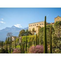 Merano e il Castello di Sissi